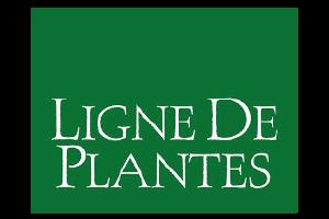 ligne-de-plantes