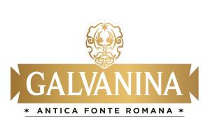 logo-galvanina