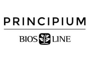 principium-line-logo